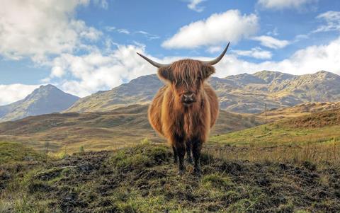 8-daagse rondreis Legendarisch Schotland