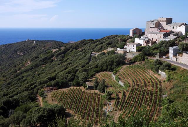 8 daagse rondreis bijzonder corsica frankrijk arke nu tui - Centrale eiland prijzen ...