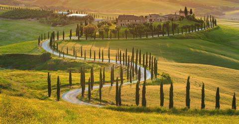 11-daagse In het spoor van de Mille Miglia