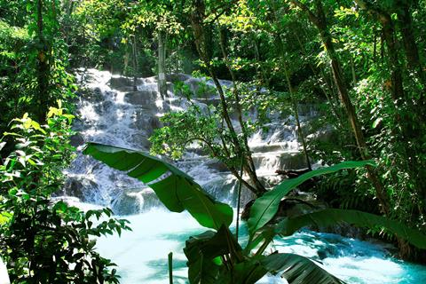 Sfeerimpressie Jamaica Highlights