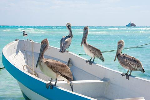 9-daagse rondreis Yucatan Highlights incl. strand