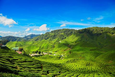 16-daagse rondreis Hoogtepunten van Maleisië