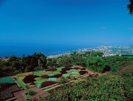8-daagse rondreis Charming Madeira