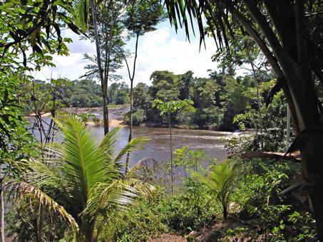 16-daagse rondreis In de ban vd Surinaamse jungle