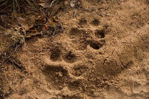 14-daagse rondreis Footprints in het Noorden
