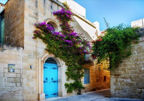 8-dg excursiereis Hoogtepunten v. Malta Sunflower