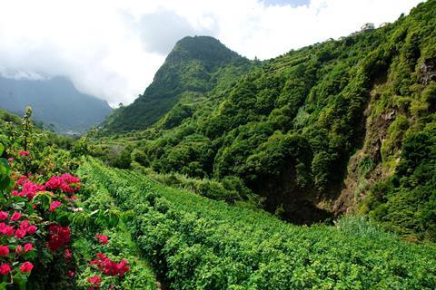 8-daagse rondreis Romantisch Madeira