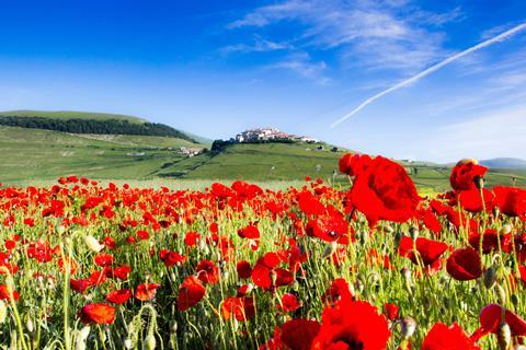 10-dg rondreis Uitgebreid Toscane&Umbrië - charme