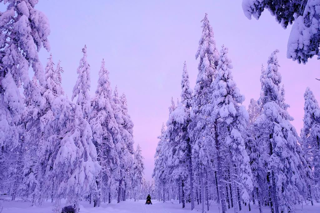 Original Sokos Kuusamo