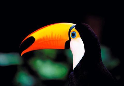 20-daagse rondreis Costa Rica & Nicaragua