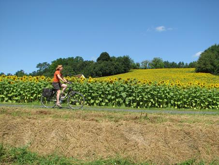 8-daagse fietsreis Loire en Cher