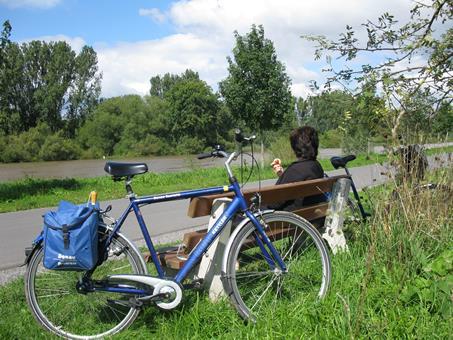 Duitsland, 6-daagse fietstour Main vanaf W�rzburg