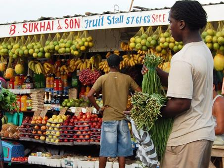 10-daagse rondreis Paramaribo en Suriname Rivier