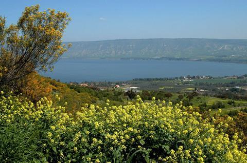 12-daagse rondreis Israel & Jordanie Israel   sfeerfoto 1