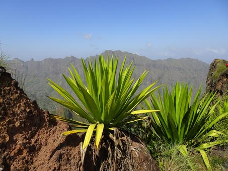 TUI Reizen: 8-daagse rondreis De valleien van Antão