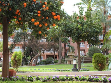 Siroco Spanje Andalusië Benalmádena sfeerfoto 4