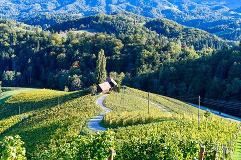 8-daagse rondreis Verken het Sloveense Boerenland