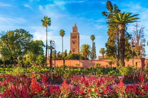 TUI Reizen: 15-daagse rondreis Highlights van Marokko
