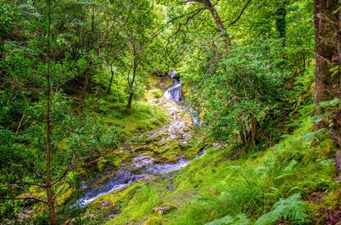 Sfeerimpressie 8-daagse Wandelreis Ierland - Wicklow Way