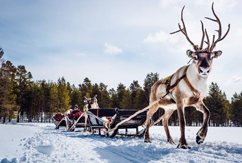 8 daagse excursiereis Best of Lapland
