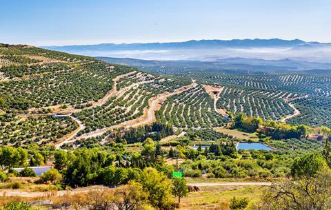 Heerlijke zonvakantie Andalusië 🏝️10 dg fly drive Adembenemend Andalusië vanaf nov