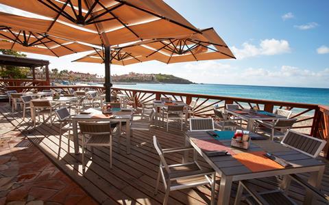 Last minute vakantie Nederlands St Maarten 🏝️Divi Little Bay Beach Resort
