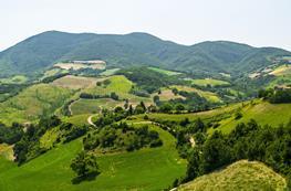 Rondreis Le Marche en het groene hart