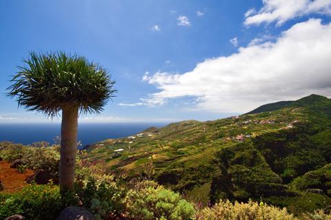 8-daagse singlereis La Isla Bonita La Palma Spanje    sfeerfoto groot