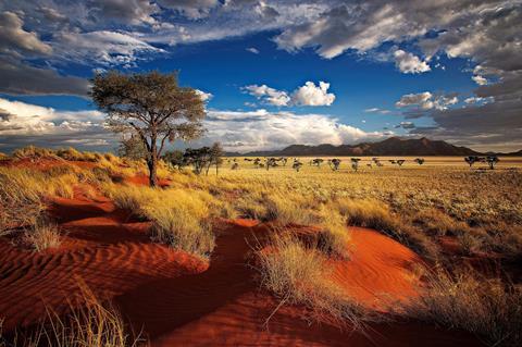 fly & drive windhoek