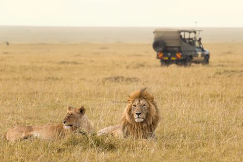 8-daagse safari Verrassend Tanzania icm Zanzibar