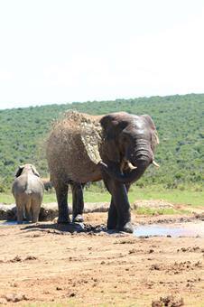 Sfeerimpressie 25-dg rondreis SeeItAll Kruger tot Kaap, Lesotho