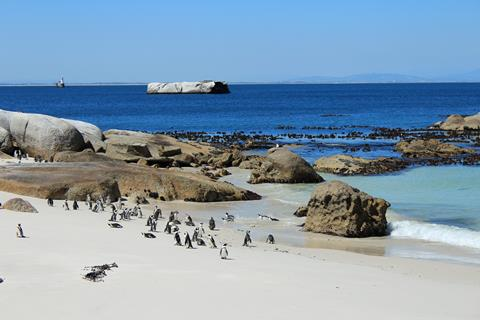Sfeerimpressie 20-daagse rondreis Zuid-Afrika Impressies