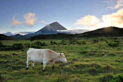 TUI Reizen: 15-daagse Eilandhoppen Azoren Compleet
