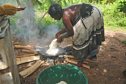 13-daagse rondreis Suriname in a nutshell