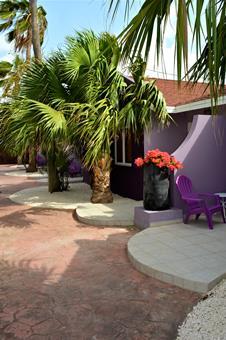 Cadushi Aruba Aruba Oranjestad sfeerfoto 3