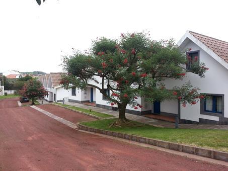 Goedkope zonvakantie Sao Miguel 🏝️Nossa Senhora da Estrela