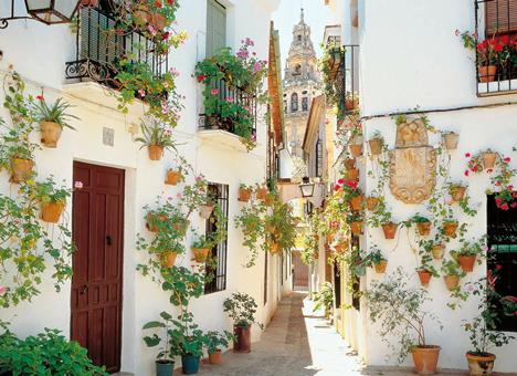 15-daagse rondreis Betoverend Andalusië