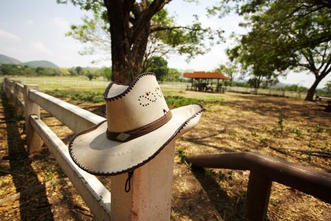 16-daagse rondreis Cowboy Adventure