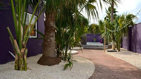 Cadushi Aruba Aruba Oranjestad sfeerfoto 1