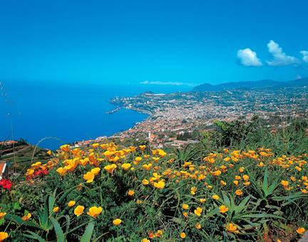15-dgs excursiereis De vele gezichten van Madeira