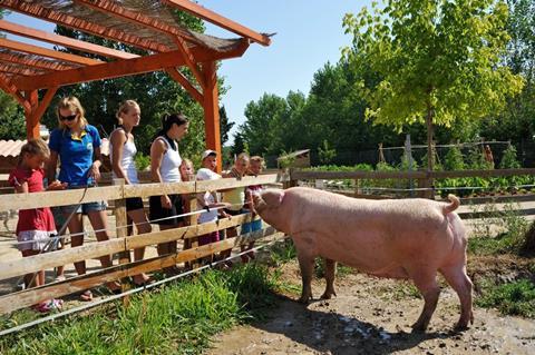 Top zonvakantie Languedoc & Roussillon 🏝️Domaine La Yole - Happy Camp