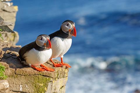 15-daagse Vakantie naar 15 daagse cruise Noorwegen, IJsland en Schotland in