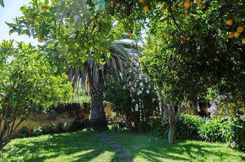 Rural Las Calas Vega de San Mateo