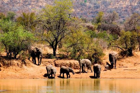 16-daagse safari Verrassend Tanzania icm Zanzibar