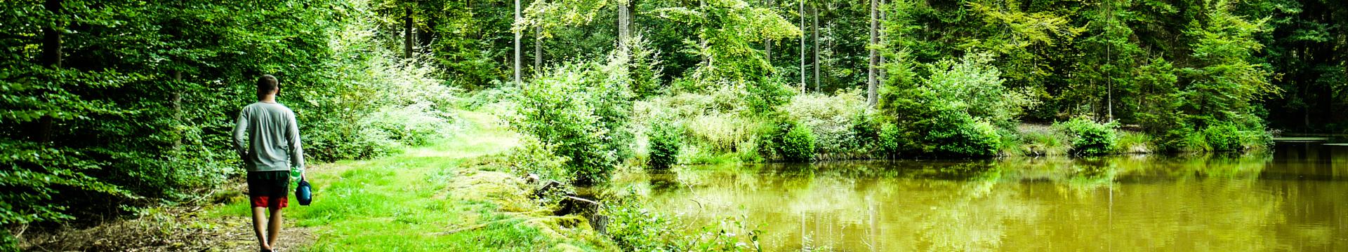 Waldmünchen