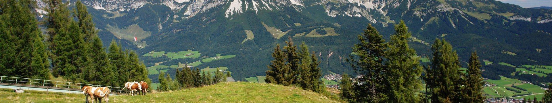 Wilder Kaiser Brixental