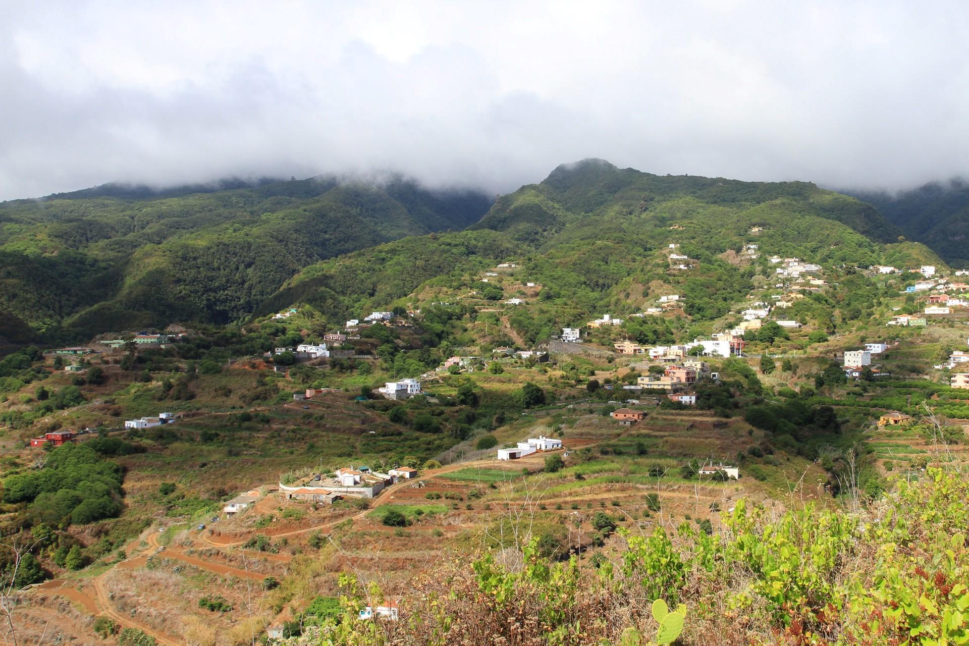 Brena Baja