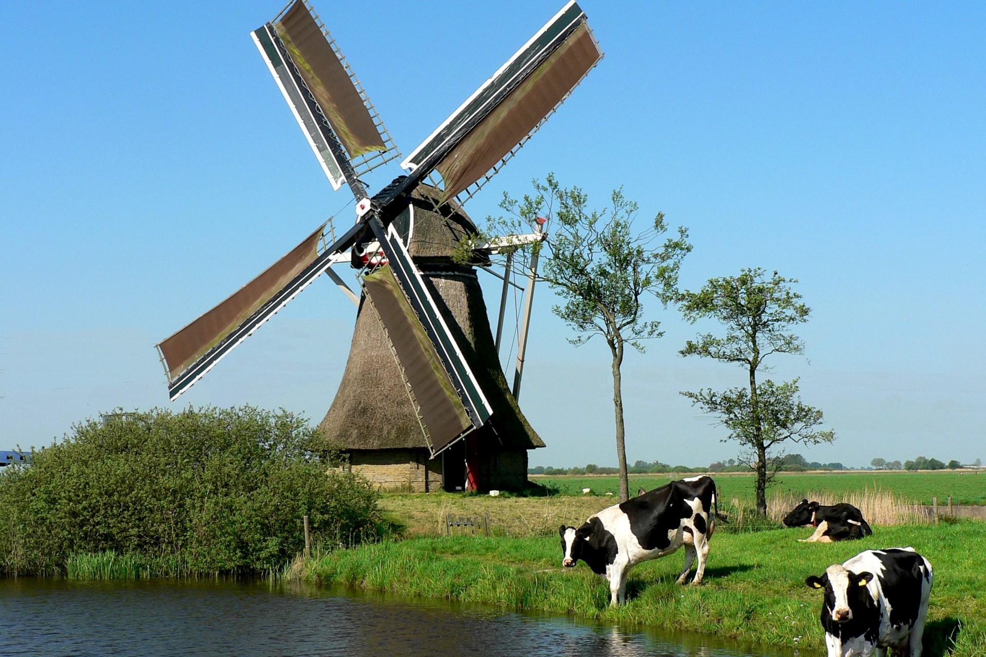Afbeeldingsresultaat voor nederlandse vakantie