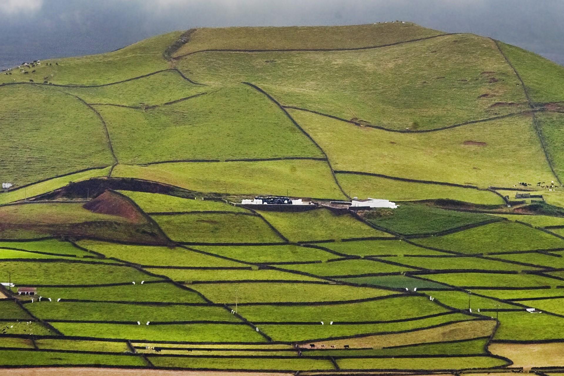 Vliegtickets  Terceira