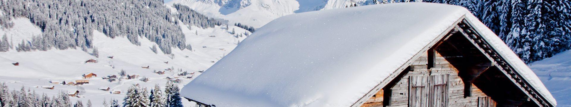 Skigebied Adelboden - Lenk